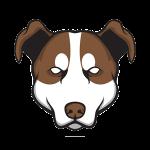 HondenRecht Blog